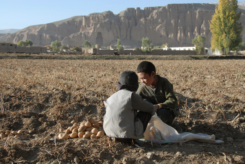 Potato pickers, Bamiyan - Pic Helena Mulkerns