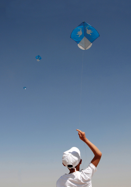 Kite Flyer, Kabul - Pic Helena Mulkerns
