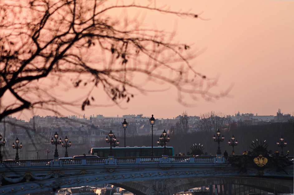 view of pont alexandre iii in Paris on sunset