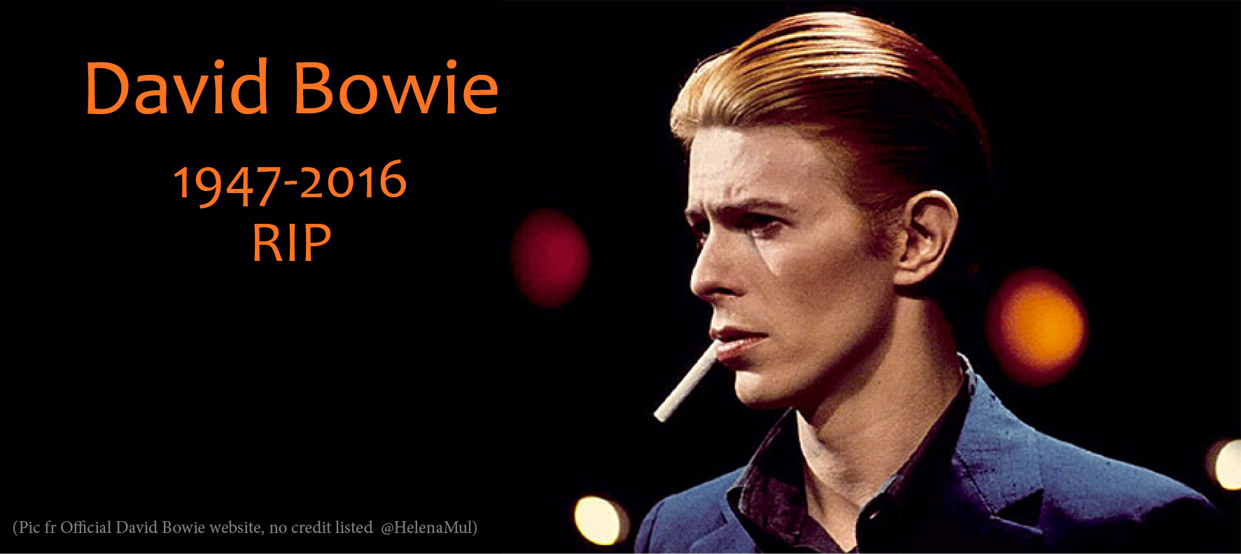 Bowie-In-DEs-web